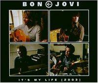 Cover Bon Jovi - It's My Life [2003]